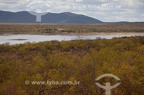 Assunto: Vegetação típica de caatinga no Parque Estadual de Canudos com o açude Cocorobó ao fundo / Local: Canudos - Bahia (BA) - Brasil / Data: 06/2012