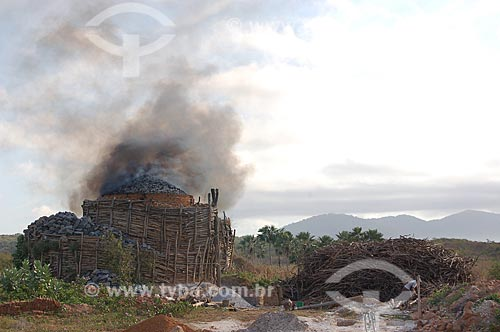 Assunto: Carvoaria próximo a município de Buriticupu (MA) / Local: Buriticupu - Maranhão (MA) - Brasil / Data: 08/2006