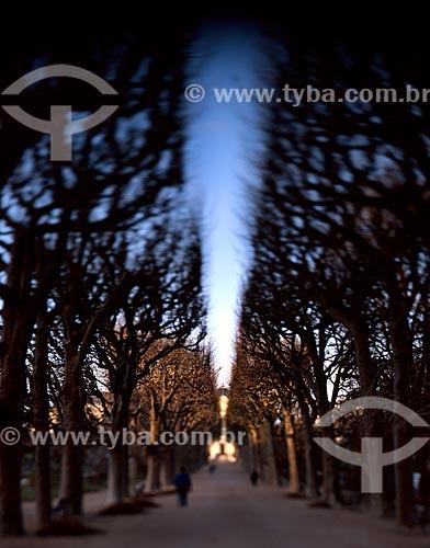 Assunto: Alameda na Avenida Champs-Élysées (Avenue des Champs-Élysées) / Local: Paris - França - Europa / Data: 09/2012