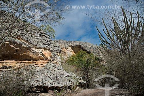 Assunto: Inscrições rupestres na no Parque Nacional do Catimbau - Pintura dos Homens sem Cabeça / Local: Buíque - Pernambuco (PE) - Brasil / Data: 08/2012