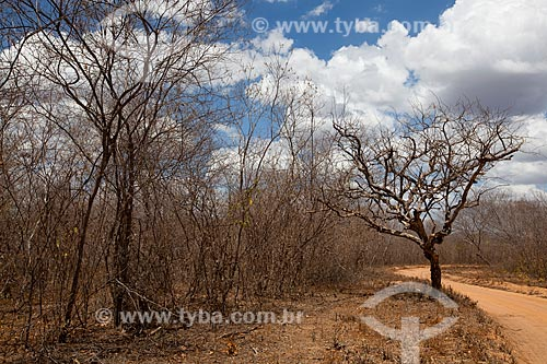 Assunto: Fazenda Não Me Deixes que pertenceu a  Rachel de Queiroz / Local: Daniel de Queiroz - Quixadá - Ceará (CE) - Brasil / Data: 11/2012