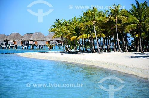 Assunto: Praia com coqueiros e os bangalores de um resort ao fundo / Local: Ilha Bora Bora - Polinésia Francesa - Oceania / Data: 10/2012