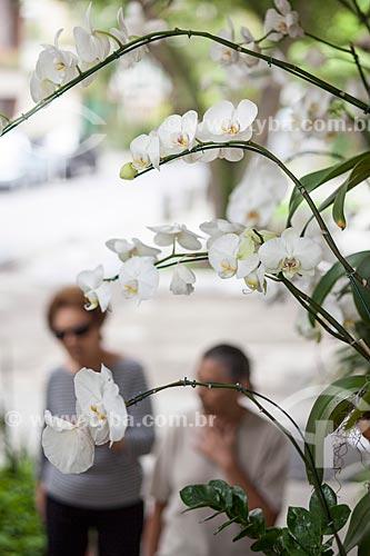 Assunto: Orquídeas Phalaenopsis brancas na rua Nascimento Silva / Local: Ipanema - Rio de Janeiro (RJ) - Brasil / Data: 11/2012