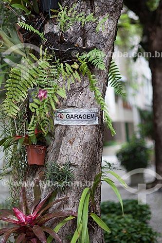 Assunto: Bromélia e orquídea na rua Nascimento Silva / Local: Ipanema - Rio de Janeiro (RJ) - Brasil / Data: 11/2012