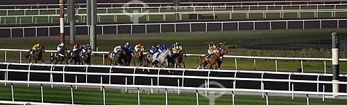 Assunto: Corrida de cavalos no hipódromo de Nad Al Sheba / Local: Abu Dhabi - Emirados Árabes Unidos - Ásia / Data: 03/2012