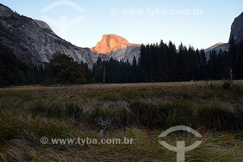 Assunto: Vista do Parque Nacional de Yosemite com a montanha Half Dome ao fundo / Local: Califórnia - Estados Unidos da América - EUA / Data: 09/2012
