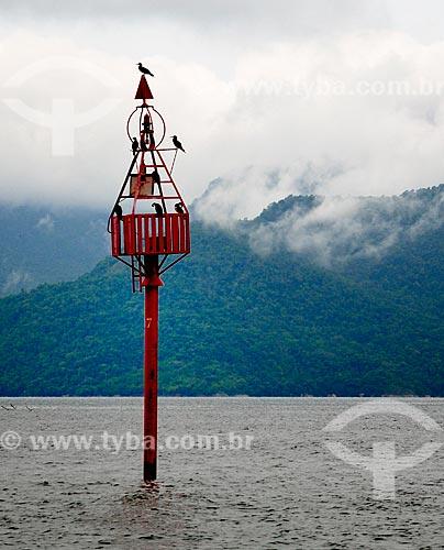 Assunto: Pássaros pousados em uma boia de sinalização / Local: Distrito Ilha Grande - Angra dos Reis - Rio de Janeiro (RJ) - Brasil / Data: 12/2010