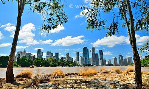 Assunto: Margem do Rio Brisbane com prédios ao fundo / Local: Brisbane - Queensland - Austrália - Oceania / Data: 01/2011