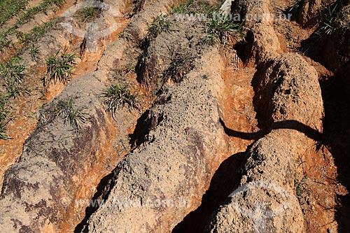 Assunto: Voçoroca ou Vossoroca - Erosão do solo / Local: Alta Floresta - Mato Grosso (MT) - Brasil / Data: 05/2012