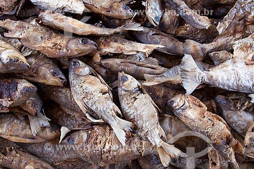 Peixes moqueados para o ritual do Kuarup - cerimônia deste ano em homenagem ao antropólogo Darcy Ribeiro - Imagem licenciada (Released 94) - ACRÉSCIMO DE 100% SOBRE O VALOR DE TABELA  - Gaúcha do Norte - Mato Grosso - Brasil