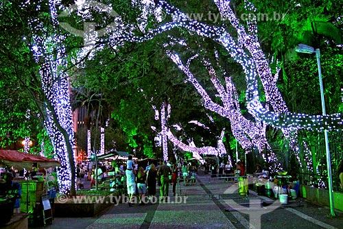 Assunto: Decoração natalina no Parque Tenente Siqueira Campos (Trianon) / Local: São Paulo (SP) - Brasil / Data: 12/2008