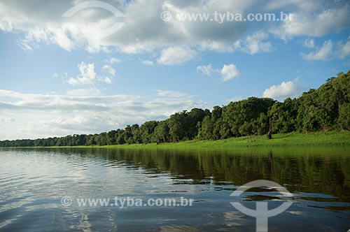 Assunto: Lago Mamirauá / Local: Amazonas (AM) - Brasil / Data: 10/2007