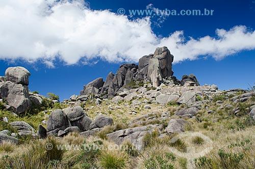 Assunto: Maciço das Prateleiras no Parque Nacional de Itatiaia / Local: Itatiaia - Rio de Janeiro (RJ) - Brasil / Data: 08/2012