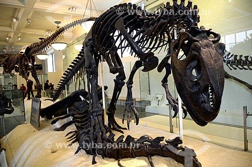 Assunto: Fóssil de um Alossauro no Museu Americano de História Natural - Allosaurus significa