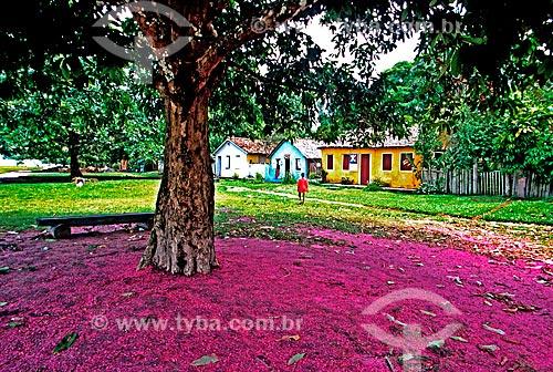 Assunto: Detalhe de flores de jambo no chão e Casario do Quadrado de Trancoso ao fundo / Local: Trancoso - Porto Seguro -  Bahia (BA) - Brasil  / Data: 1999