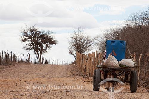 Assunto: Água sendo transportada em carroça / Local: São José do Egito - Pernambuco (PE) - Brasil / Data: 01/2013