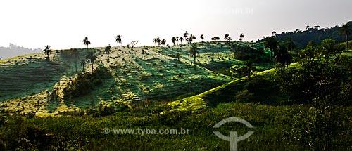 Assunto: Paisagem de pasto molhado pelo orvalho da manhã na área rural de Jacutinga - próximo à fronteira com Itapira (SP) / Local: Jacutinga - Minas Gerais (MG) - Brasil / Data: 12/2012