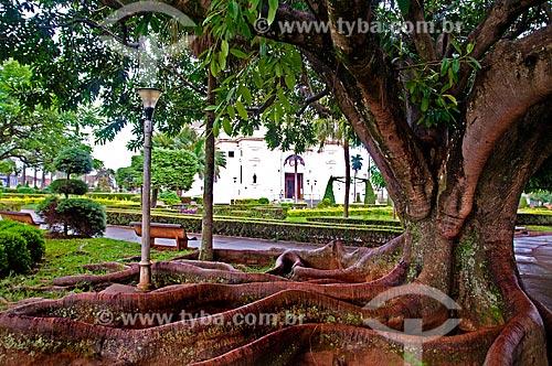 Assunto: Árvore na praça com a Igreja Matriz do Bom Jesus da Cana Verde (1953) ao fundo / Local: Batatais - São Paulo (SP) - Brasil / Data: 12/2012