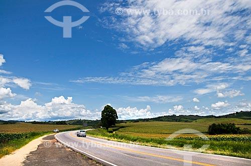 Assunto: Rodovia Vital Brazil / Local: Próximo à Baependi - Minas Gerais (MG) - Brasil / Data: 01/2013