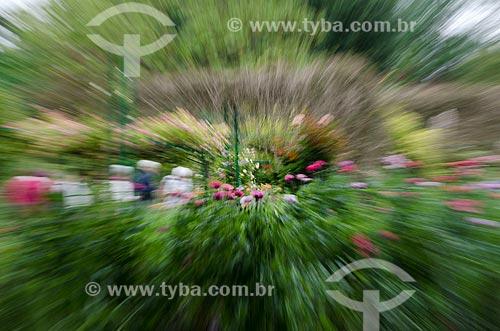 Assunto: Flores no jardim de Claude Monet / Local: Giverny - França - Europa / Data: 06/2012