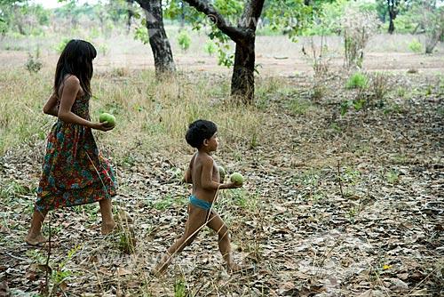 Assunto: Crianças da aldeia Aiha Kalapalo colhendo Pequi (Caryocar brasiliense) - ACRÉSCIMO DE 100% SOBRE O VALOR DE TABELA / Local: Querência - Mato Grosso (MT) - Brasil / Data: 10/2012