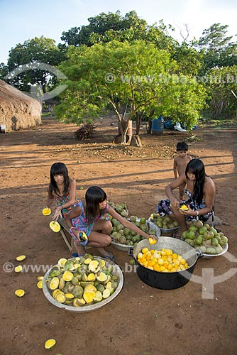 Assunto: Mulher e crianças da aldeia Aiha Kalapalo cortando Pequi (Caryocar brasiliense) para o preparo do mingau - ACRÉSCIMO DE 100% SOBRE O VALOR DE TABELA / Local: Querência - Mato Grosso (MT) - Brasil / Data: 10/2012