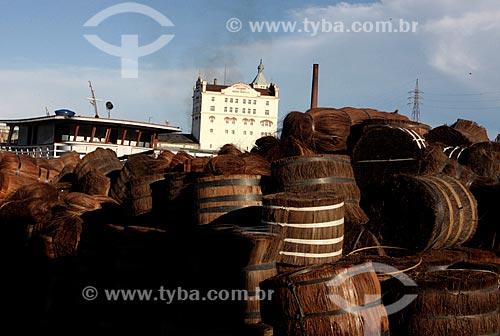 Assunto: Piaçavas (Attalea funifera) no Porto de São Raimundo com a Fábrica de Cerveja Miranda Corrêa & Cia - a primeira fábrica de cerveja e de gelo de Manaus - ao fundo / Local: Manaus - Amazonas (AM) - Brasil / Data: 05/2010