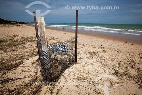 Assunto: Ninho de Tartaruga-de-Pente (Eretmochelys imbricata) na Praia de Intermares - Projeto Tartarugas Urbanas (ONG Guajiru) / Local: Cabedelo - Paraíba (PB) - Brasil / Data: 02/2013