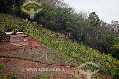 Assunto: Casa e plantação de pequeno produtor rural / Local: Areia - Paraíba (PB) - Brasil / Data: 02/2013
