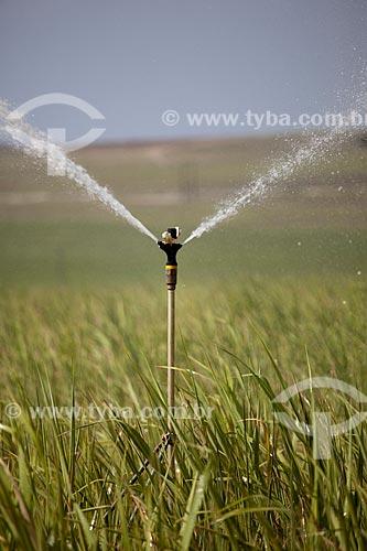 Assunto: Irrigação em plantação de cana-de-açúcar as margens da Rodovia PE-075 / Local: Goiana - Pernambuco (PE) - Brasil / Data: 02/2013