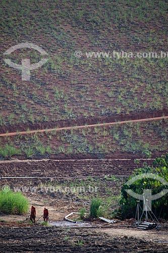Assunto: Operários instalando equipamento de irrigação em plantação de cana-de-açúcar às margens da Rodovia PE-075 / Local: Goiana - Pernambuco (PE) - Brasil / Data: 02/2013