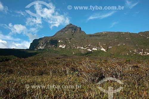Assunto: Pico da Neblina na Serra do Imeri - Ponto mais alto do Brasil / Local: Amazonas (AM) - Brasil / Data: 10/2012