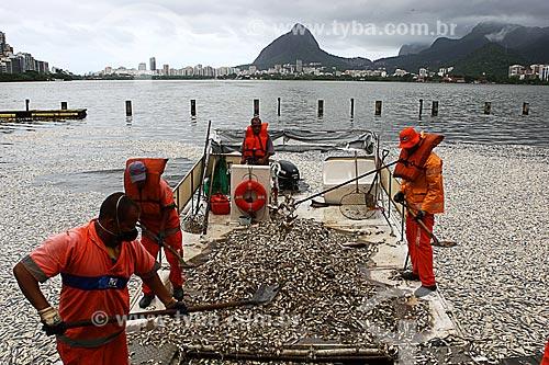 Assunto: Mortandade de peixes na Lagoa Rodrigo de Freitas com o Morro Dois Irmãos e a Pedra da Gávea ao fundo / Local: Lagoa - Rio de Janeiro (RJ) - Brasil / Data: 03/2013
