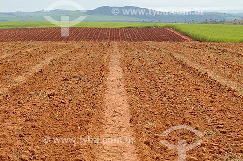 Assunto: Terra arada para plantio de cana-de-açúcar / Local: Delfinópolis - Minas Gerais (MG) - Brasil / Data: 03/2013