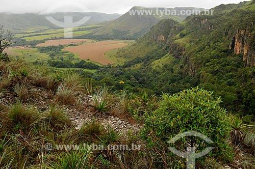 Assunto: Plantação de milho em uma propriedade rural no entorno da Serra da Canastra / Local: São João Batista do Glória - Minas Gerais (MG) - Brasil / Data: 03/2013