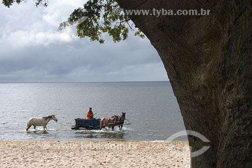 Assunto: Carroça com cavalos às margens da Lagoa dos Patos / Local: São Lourenço do Sul - Rio Grande do Sul (RS) - Brasil / Data: 2012