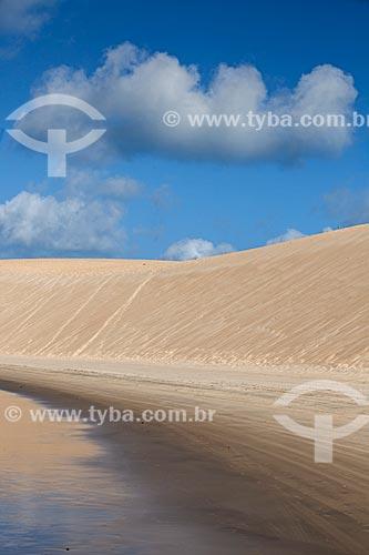 Assunto: Duna na Praia de Genipapu da APA de Jenipapu / Local: Extremoz - Rio Grande do Norte (RN) - Brasil / Data: 03/2013