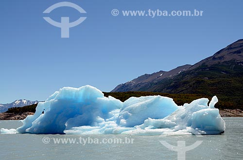Assunto: Iceberg desprendido do Glaciar Perito Moreno (Geleira Perito Moreno) flutuando no Lago Argentino / Local: Província de Santa Cruz - Argentina - América do Sul / Data: 01/2012
