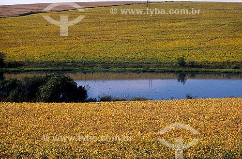 Assunto: Vista de Açude e plantação de soja / Local: Passo Fundo - Rio Grande do Sul (RS) - Brasil / Data: 2004