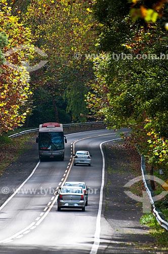 Assunto: Estrada Rota Romântica na BR-116 / Local: Rio Grande do Sul (RS) - Brasil / Data: 05/2013