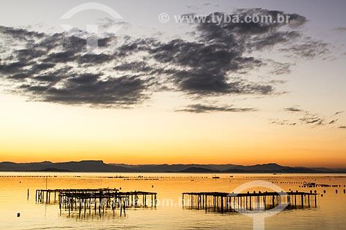 Assunto: Criação de ostras ao pôr do sol na Praia do Ribeirão da Ilha / Local: Ribeirão da Ilha - Florianópolis - Santa Catarina (SC) - Brasil / Data: 06/2013