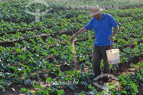 Assunto: Adubação manual na plantação de brócolis / Local: São José do Rio Preto - São Paulo (SP) - Brasil / Data: 05/2013