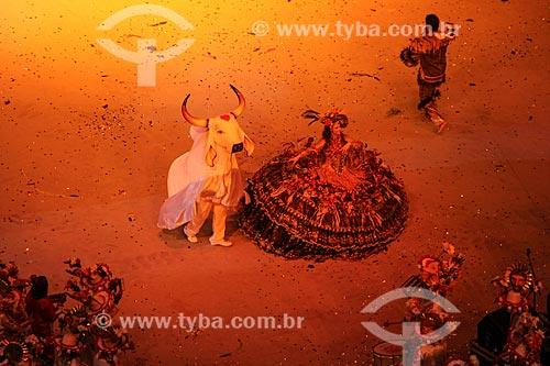 Assunto: Festival de Folclore de Parintins - Apresentação do Boi Garantido / Local: Parintins - Amazonas (AM) - Brasil / Data: 06/2013
