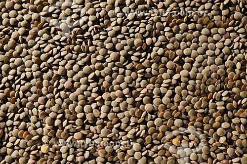 Assunto: Grãos de lentilha cru / Local: São José do Rio Preto - São Paulo (SP) - Brasil / Data: 07/2013