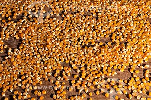 Assunto: Grãos de milho cru / Local: São José do Rio Preto - São Paulo (SP) - Brasil / Data: 07/2013