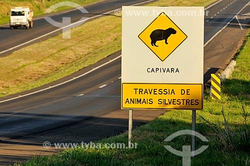 Assunto: Placa indicando travessia da Capivara (Hydrochoerus hydrochaeris) na Rodovia Euclides da Cunha (SP-320) / Local: Urânia - São Paulo (SP) - Brasil / Data: 07/2013