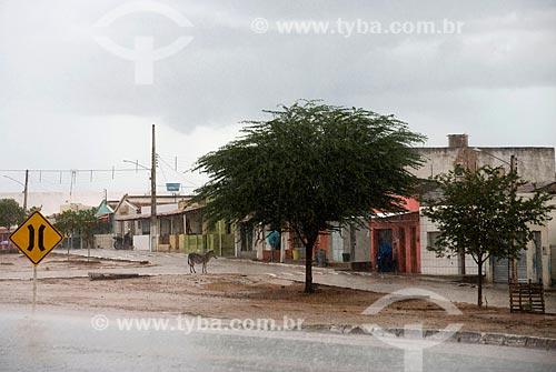 Assunto: Casas no vilarejo de Valdemar Siqueira / Local: Custódia - Pernambuco (PE) - Brasil / Data: 06/2013