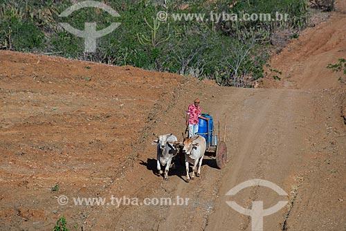 Sertanejo José Francisco de Lima e carro de boi com tonéis de água em vilarejo na zona rural  - Custódia - Pernambuco - Brasil