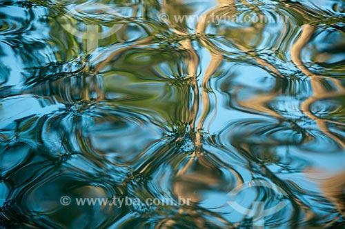 Assunto: Espelho dágua no Jardim Botânico do Rio de Janeiro / Local: Jardim Botânico - Rio de Janeiro (RJ) - Brasil / Data: 07/2011