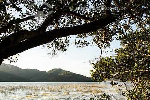 Assunto: Lagoa do Peri / Local: Florianópolis - Santa Catarina (SC) - Brasil / Data: 08/2013
